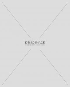 demo-img-3